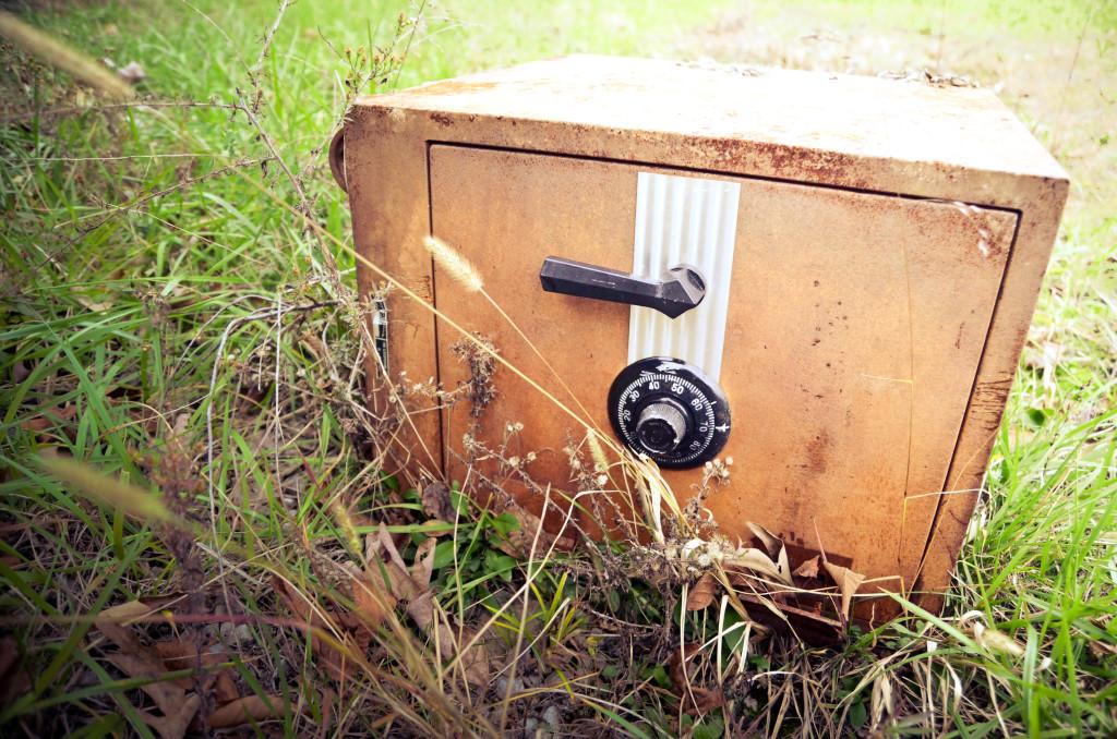 Safe, Vault: WordPress Security